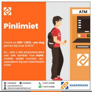 Pin Limiet 1000